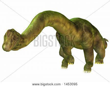 Brachiosaurus-Bow