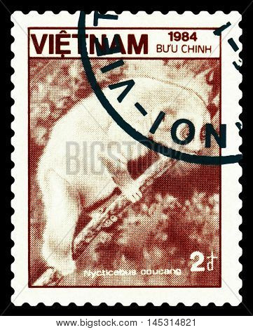 STAVROPOL RUSSIA - August 27 2016: A stamp printed in Vietnam shows Loris lentos (Nycticebus coucang) circa 1984