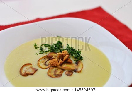 Mushroom cream soup in white plate close up