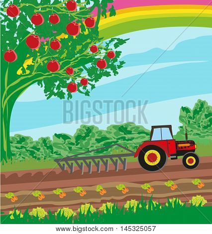 rural landscape - tractor and orchard , vector illustration