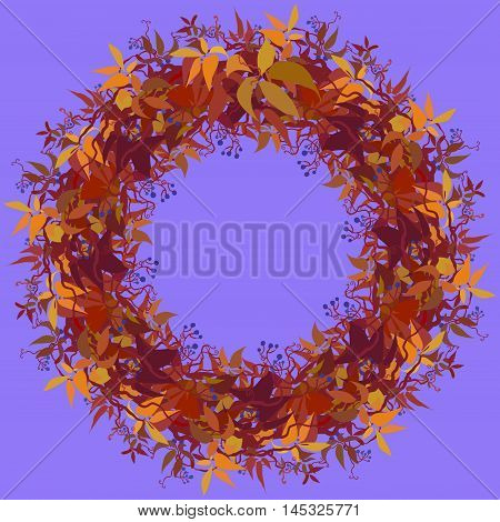 Autumn grape vine circle frame design. Wilde grape with red orange leaves and berries. Autumn or fall wreath design background. Vector illustration stock vector.