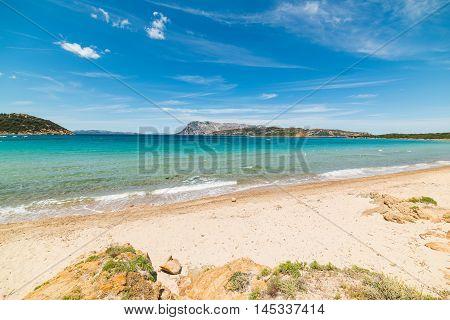 Capo Coda Cavallo shoreline on a clear day Sardinia