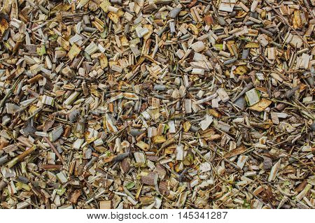 Shredded tree branches and bushes lie on the ground.