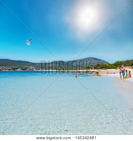 bathers in a beautiful beach in Sardinia Italy