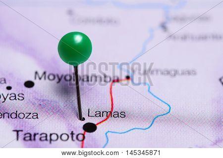Lamas pinned on a map of Peru