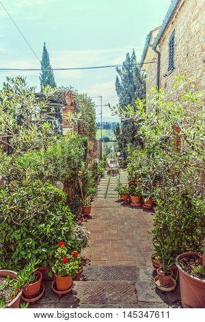 a garden in San Gimignano in Italy