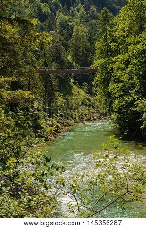 Mountain river Salza and suspension bridge in the gorge - Palfau Austria