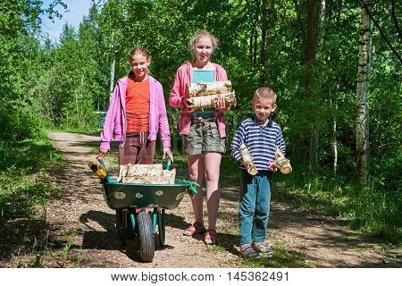 Children Carry Firewood From Forest