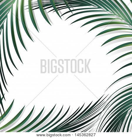 Illustration of Abstract Jungle Palm Leaves Background Over White Copyspace