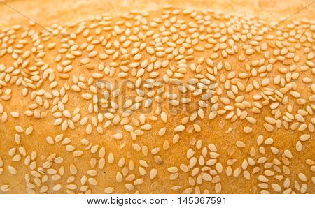 background of bun with sesame seeds organic texture