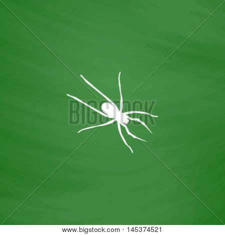 Spider Simple line vector button. Imitation draw with white chalk on blackboard. Flat Pictogram and School board background. Outine illustration icon