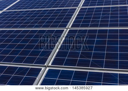 Solar Panel Farm. Corn Fields are Being Converted into Green Energy Areas Using Photovoltaic Cells IV
