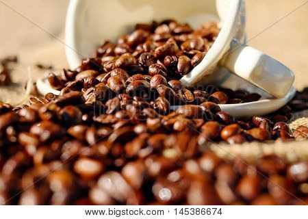 Coffee Beans Fray From White Cup