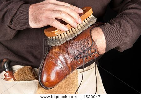 Shoe Polisher