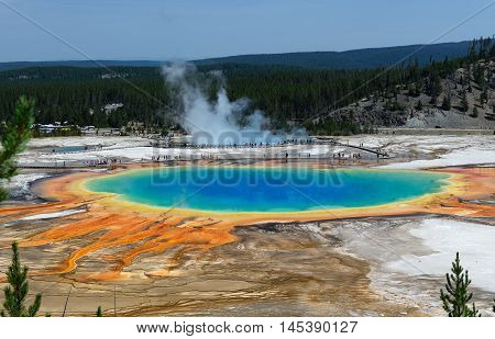 Famous trail of Grand Prismatic Springs in Yellowstone National Park from high angle view. Beautiful hot springs with vivid color blue green orange in Wyoming. A lot of people vitsit the gorgeous Grand Prismatic Springs during summer.