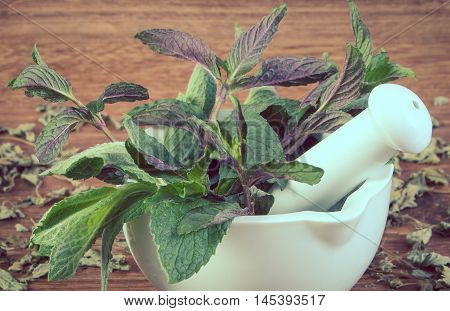 Vintage Photo, Dried And Fresh Green Mint With Mortar, Healthy Lifestyle
