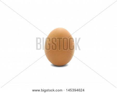 Realistic one single brown eggs with drop shadow isolated on white background, vector