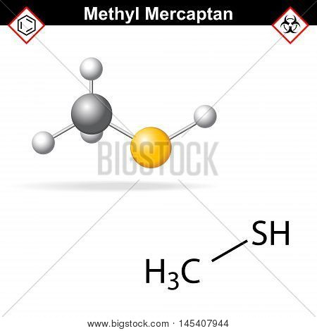 Methyl mercaptan molecule odorant of natural gas 2d and 3d illustration vector eps 8