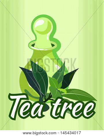 vector illustration of tea tree essential oil bottle / the concept of spa procedure / massage with essential oil