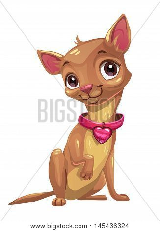 Little cute sitting chihuahua puppy. Little brown pocket dog, isolated on white background. Vector illustration.