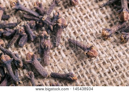 Cloves On Burlap Fabric With Faded Effect