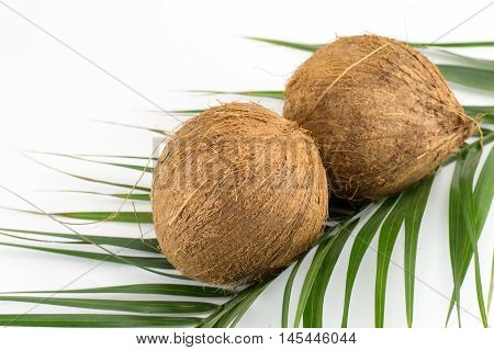 Whole Coconuts On Coconut Leaves On White