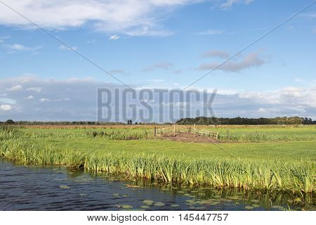 Typical polder farmland along a canal in The Netherlands