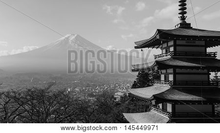 Black and White, Mt. Fuji with Chureito Pagoda in winter, Japan