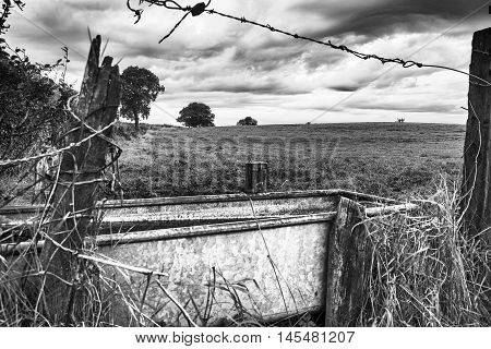 Trough of water by barbed wire and cloudy sky