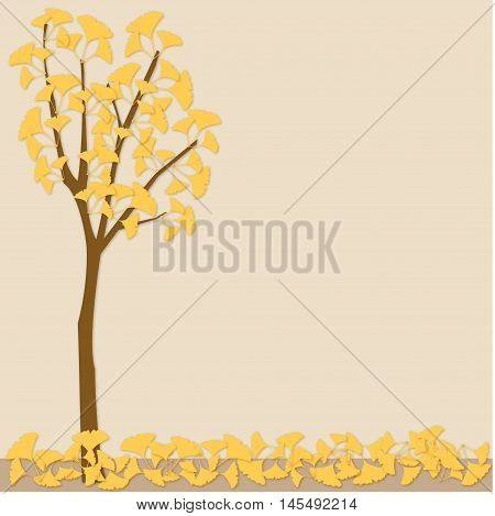 ginkgo tree fall autumn street shedding leaves maple