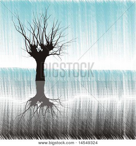 Árvore em água