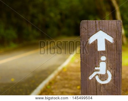 The Handicapped Road In The Public Park With Sunlight