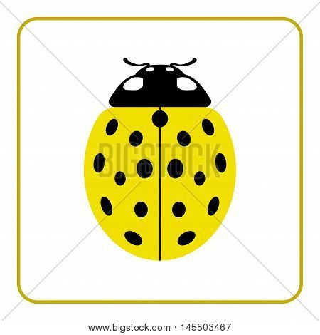 Ladybug small icon. Yellow lady bug sign isolated on white background. Wildlife animal design. Cute colorful ladybird. Insect cartoon beetle. Symbol of nature spring summer. Vector illustration