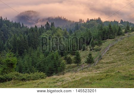 Misty dreamy landscape. Deep misty valley in autumn Carpathians park full of heavy clouds of dense fog