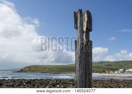 Single Pylon Pillar Post, Jetty Ruins, Myponga Beach, South Australia