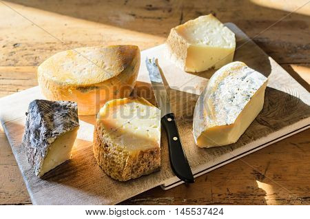 Different kinds of fresh farm delicious homemade cheese selection from goat and cow's milk on wooden rustic board on old-fashioned table background close-up, natural side sunlight, selective focus