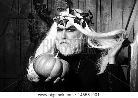 Fairytale Sorcerer