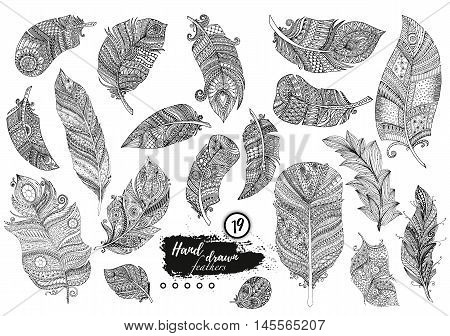 Artistically drawn, stylized, vector set of boho feathers on a white background. Vintage tribal feather. Illustration is created from a personal sketch by trace. Series of doodle feather.