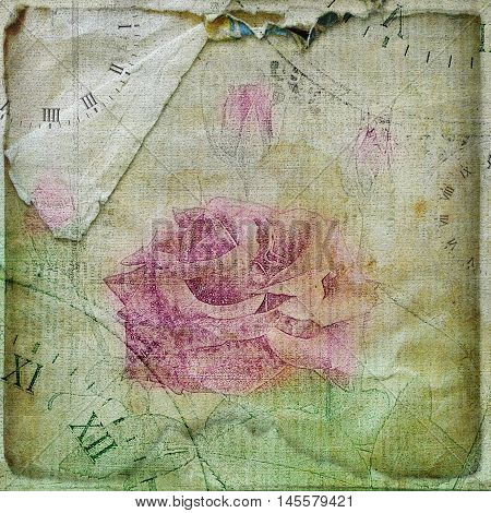 Old Torn Crumpled Paper  With Hand Drawn Rose