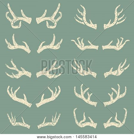 Set of hand drawn deer horns. Design elements for logo label emblem sign brand mark. Vector illustration.
