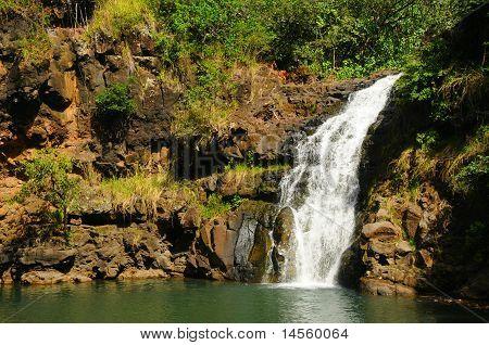 Waimea Falls Oahe Hawaii