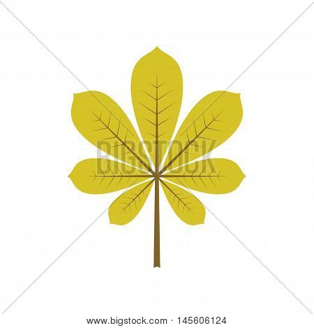 Isolated green leaf of tree. Element of design. Vector illustration. Autumn decoration.