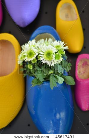 white flowers in typical Dutch wooden clog, bright background