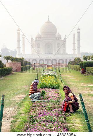 Workers In The Garden Of Taj Mahal