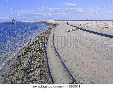 Tide line textures at Amity - North Stradbroke Island