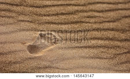 sand. a loose granular substance, typically pale yellowish brown, resulting from the erosion of siliceous and other rocks and forming a major constituent of beaches, riverbeds, the seabed, and deserts.