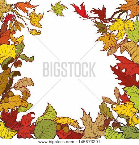 Fall Festival frame or border. Greeting card, flyer or poster template. Bright colourful autumn leaves isolated on square white background. Elaborate hand drawing. EPS10 vector illustration.