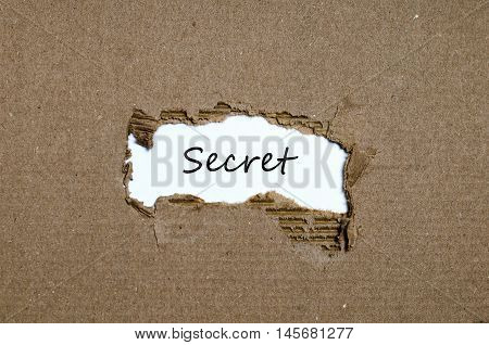 The word secret appearing behind torn paper