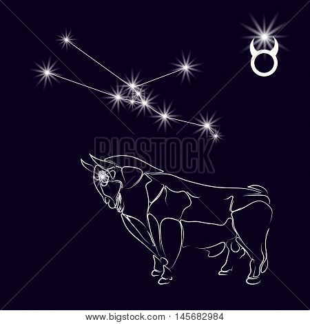 Constellation Taurus. Realistic star. White bull, zodiac sign. Tattoo. Made with a predominance of white on a dark background. Vector illustration