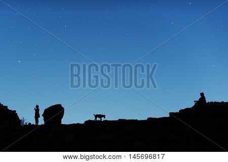 Blue starry sky and men with dog